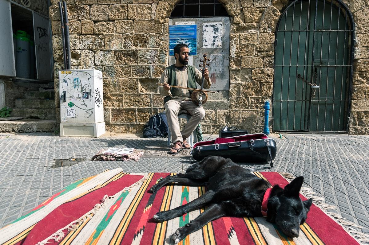 A day in Tel Aviv Musician in Jaffa