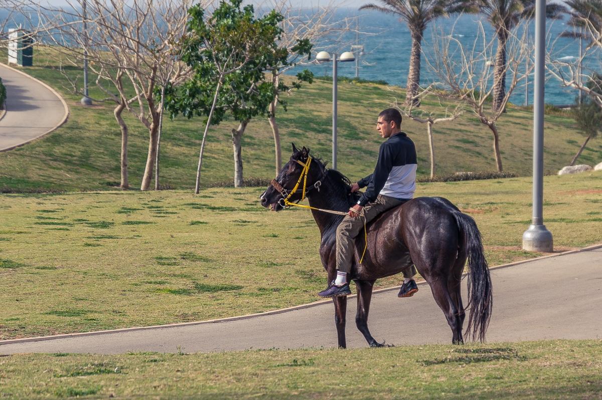 A day in Tel Aviv boy rider