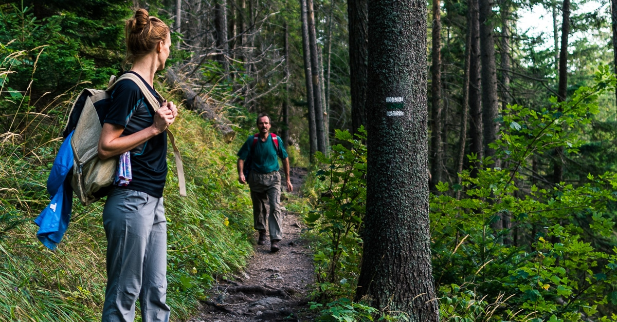 Hiking Guide: What to Know Before Hitting a Trail For The First Time