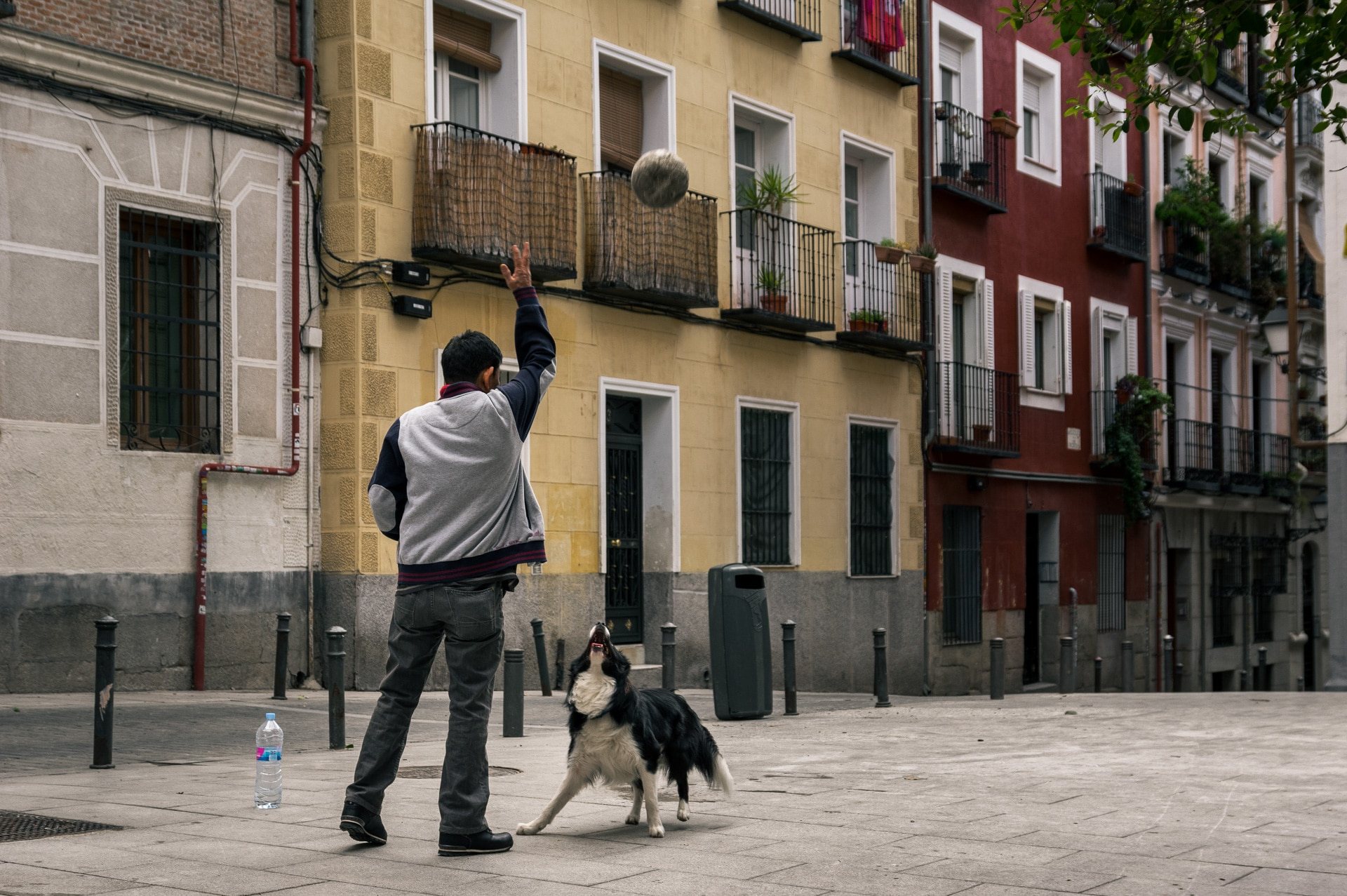 a man and a border collie playing with a ball on an empty square