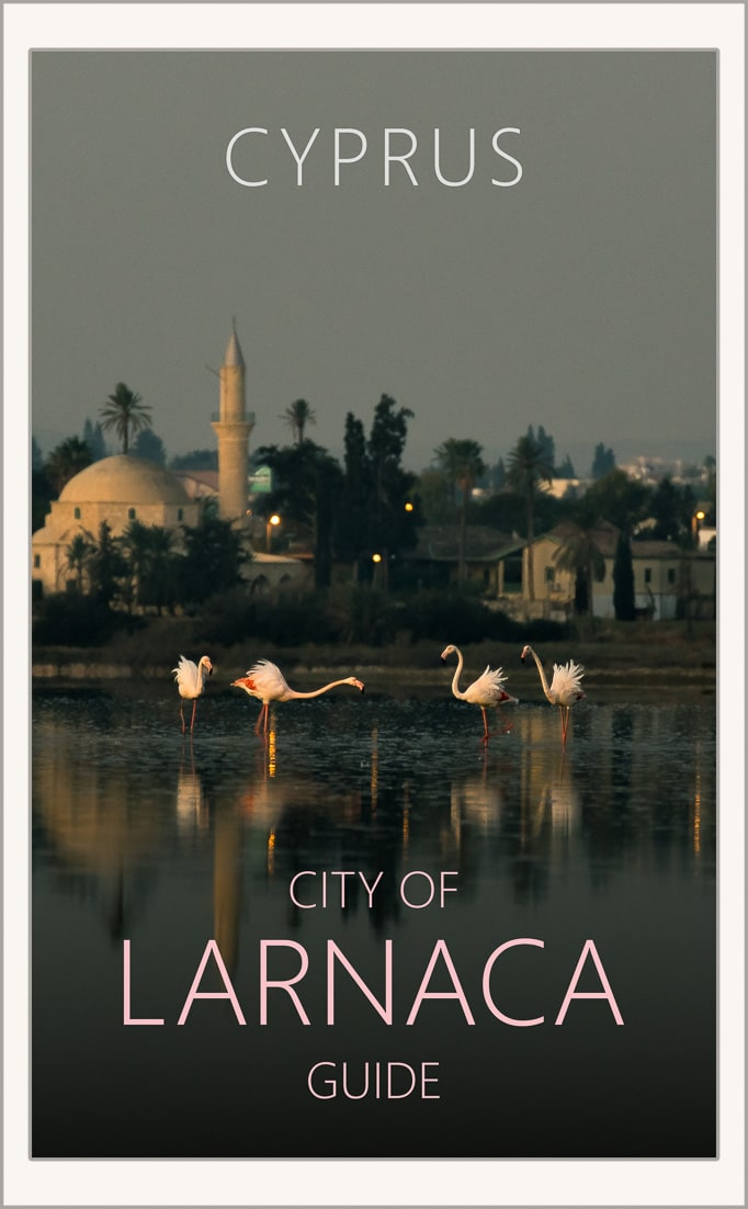 Things to do in Larnaca pin