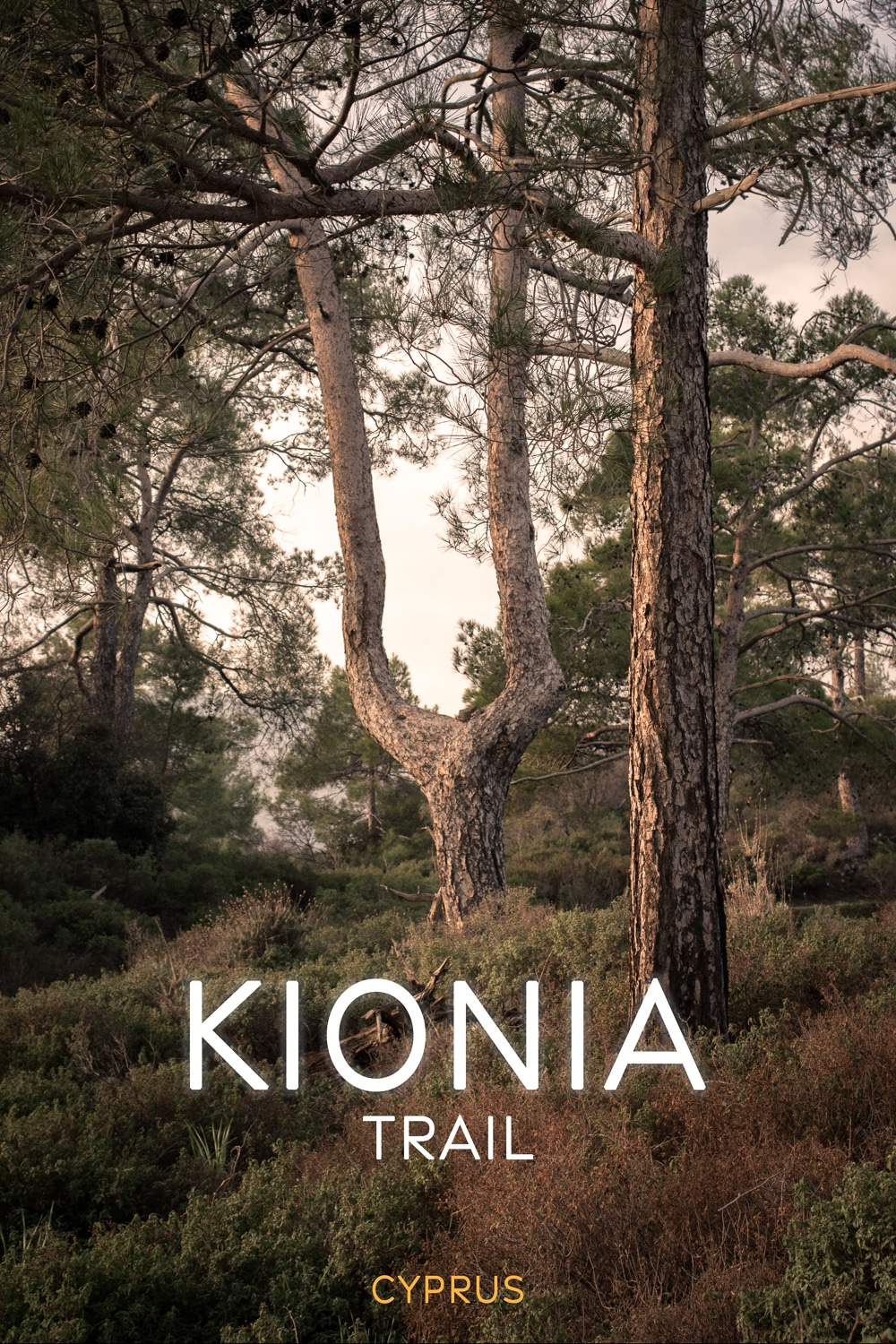 Hiking the Alluring Kionia - Profitis Ilias Trail in Cyprus